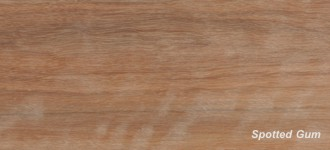 More about Spotted Gum