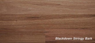 More about Blackdown Stringybark